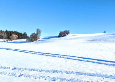 Bachtelrundweg Schneefelder