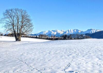 Bachtelrundweg Alpen